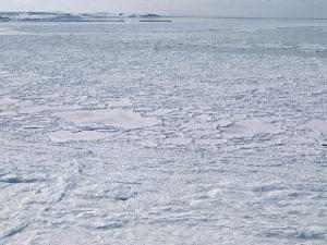 Antártida y tratado Antártico