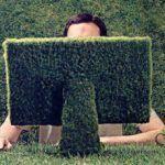 Importancia de los productos ecológicos, ¿por qué usarlos?
