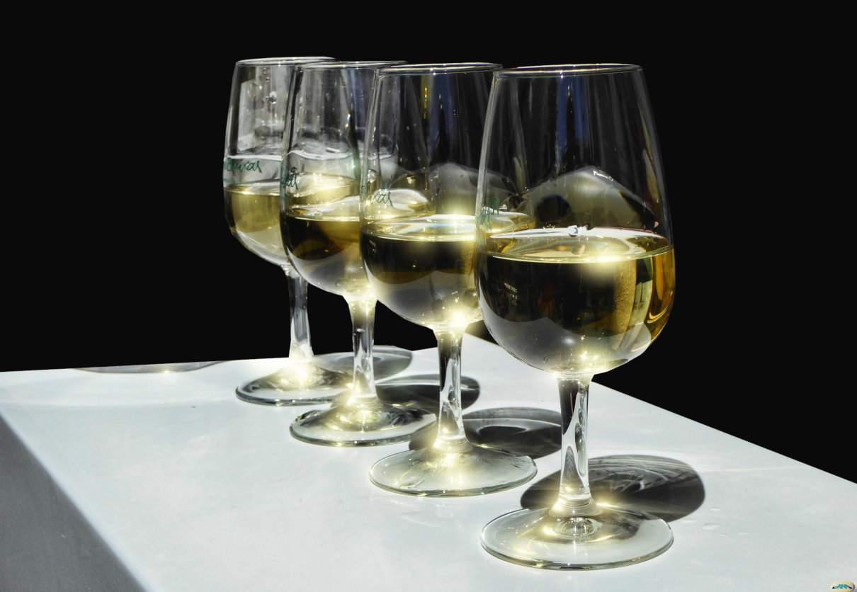 Incluir vino en tu dieta