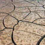 Qué es la desertizacion, principales causas y sus consecuencias