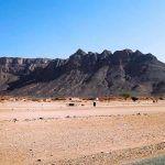 Diferencias entre desertización y desertificación, estudio aclarativo