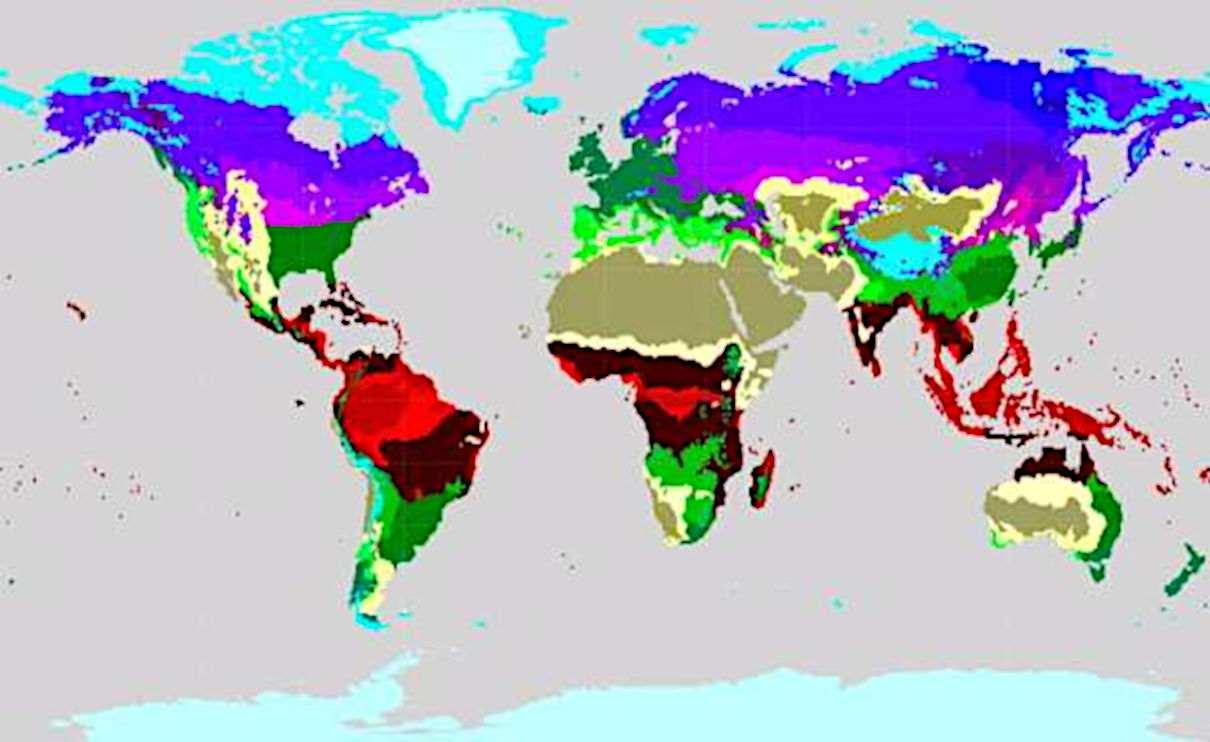 Tipos de clima según clasificación de Köppen