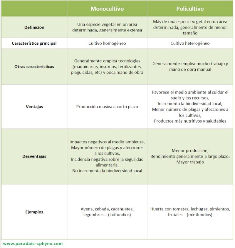 Cuadro explicativo con las diferencias entre monocultivo y policultivo, ejemplos