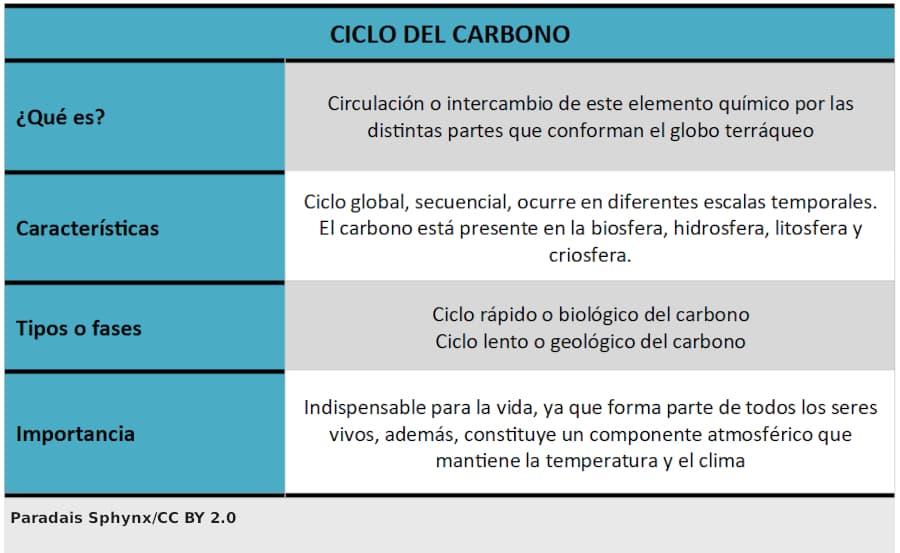 Ciclo del carbono, esquema o resumen