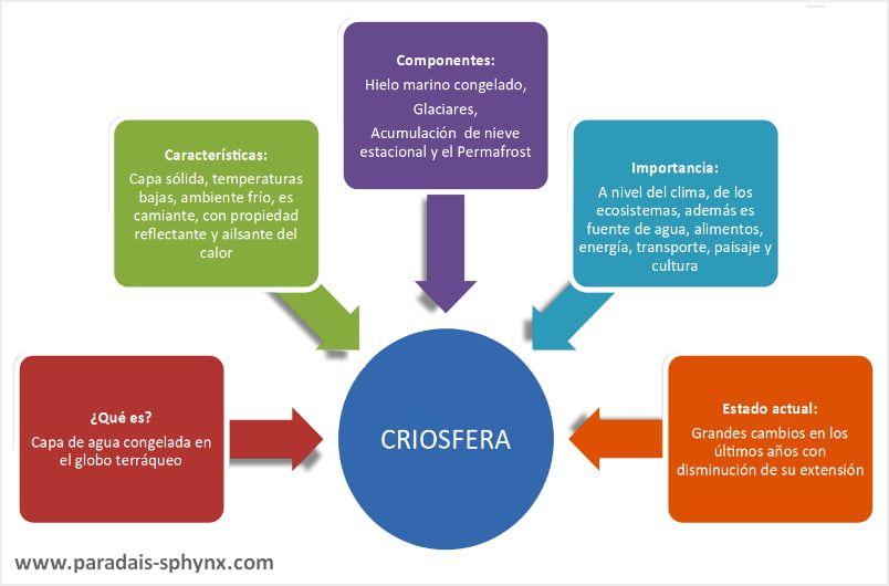 Esquema, resumen con explicación sobre  la criosfera.